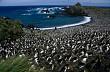 10 Hòn Đảo Thiên Đường cho động vật trên thế giới