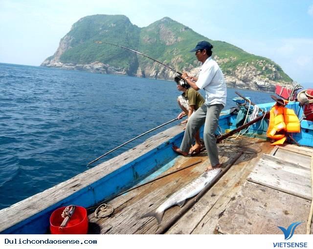 Tour Du Lịch Côn Đảo 1 Ngày: Câu Cá Ngoài Đảo Hoang